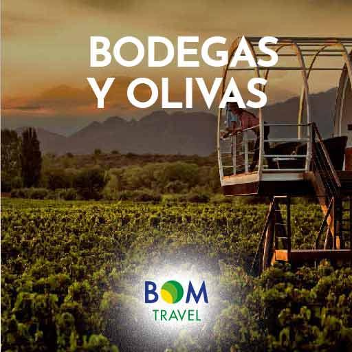 mendexc-BODEGAS-Y-OLIVAS-