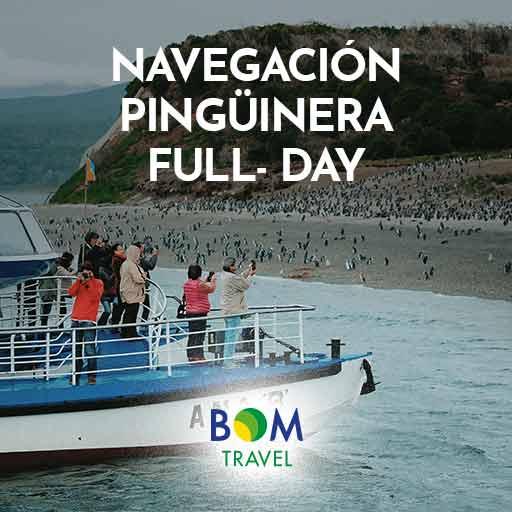 ver_NAVEGACIÓN-PINGÜINERA-FULL--DAY